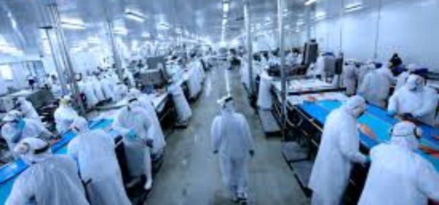 Chile – Despidos en la industria pesquera de la región de Bío Bío.