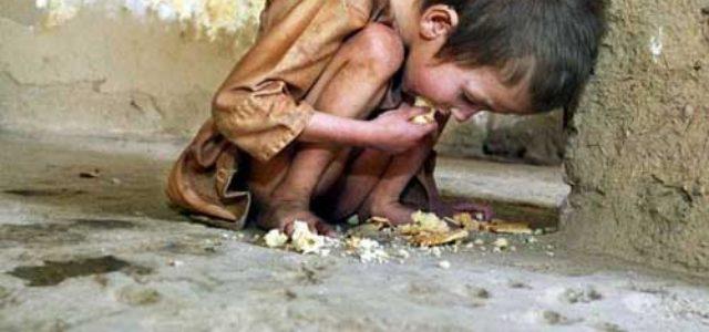 Italia: La cumbre del hambre termina sin soluciones