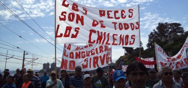 Chile – ¿Logrará el Gobierno salvar corrupta Ley de Pesca utilizando informe de FAO?