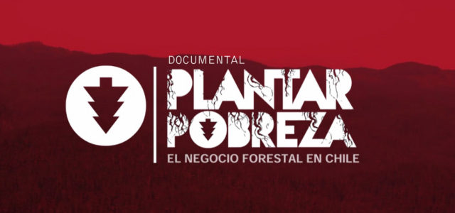 Chile – Documental: Plantar Pobreza, el Negocio Forestal en Chile