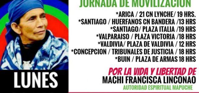 Chile / Wallmapu – Llaman a movilizaciones en todo Chile por libertad de Machi Francisca Linconao