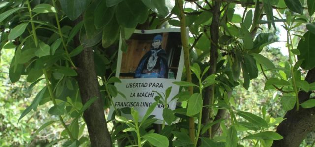 Chile / Wallmapu – Villa Grimaldi exige la libertad de la Machi Francisca Linconao