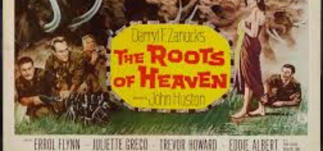"""Cine – ¿Quién puede matar a un elefante? """"Las raíces del cielo"""" de Romain Gary y de John Huston"""