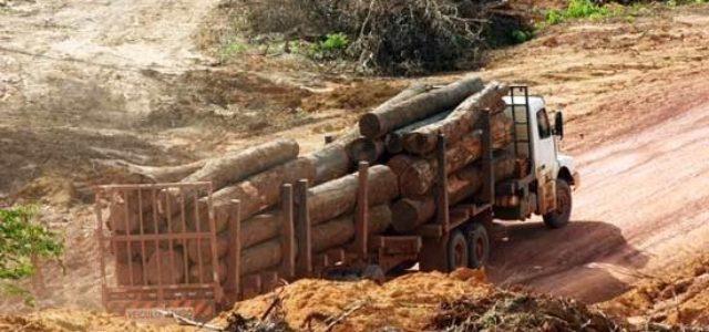 """Chile / Wallmapu – Presos Políticos Mapuche llaman a pueblo chileno a """"levantarse contra empresariado forestal"""""""