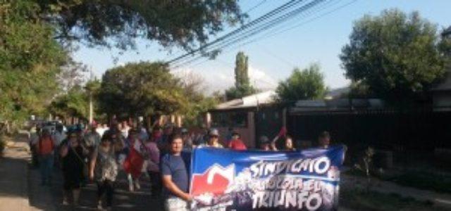 """Chile – Inminente huelga en Agrícola El Triunfo: """"Saben que están haciendo las cosas mal"""""""