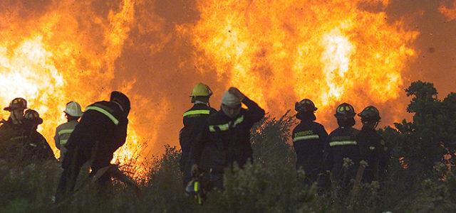Chile –Organizaciones sostienen que es urgente poner fin al modelo forestal