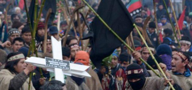 """Chile / Wallmapu – """"No queremos cámaras"""" en La Araucanía: lo que dijo la PDI al realizador Vicente Montecinos"""