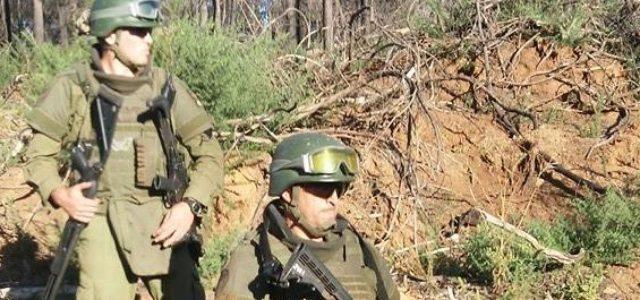 Chile / Wallmapu – Denuncian hostigamientos, allanamientos y baleo a dos comuneros en Cuyinco, Los Álamos
