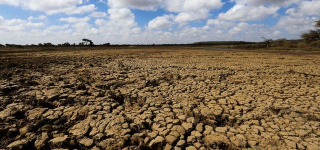 Hambruna sin precedentes en África, alerta FAO