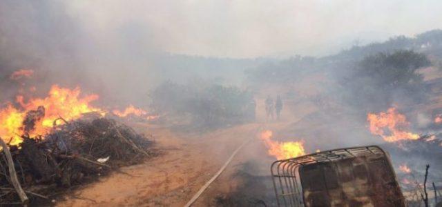 Chile – Incendio en Viña del Mar: rebrotes en zonas habitadas preocupan a rescatistas