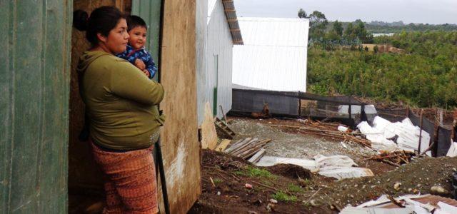 ¿A dónde va el respeto de los derechos humanos en las regiones salmoneras de Chile?