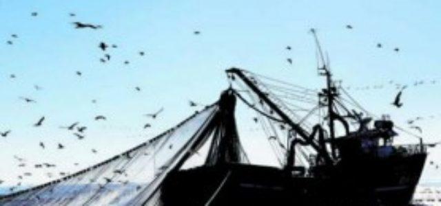 Chile – Nuevas boletas de pesqueras: $445 millones pagaron Lota Protein, Asipes y Blumar a políticos