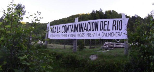 Ríos chilenos están siendo contaminados por salmoneras afirma estudio alemán