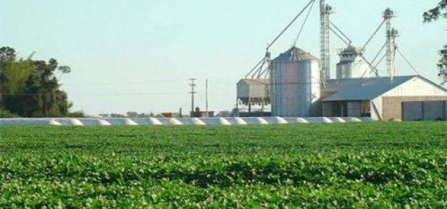 Paraguay –El negocio de la soja en Paraguay
