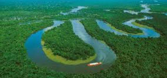 Brasil – Cuando el Amazonas se vende para salvar a Temer