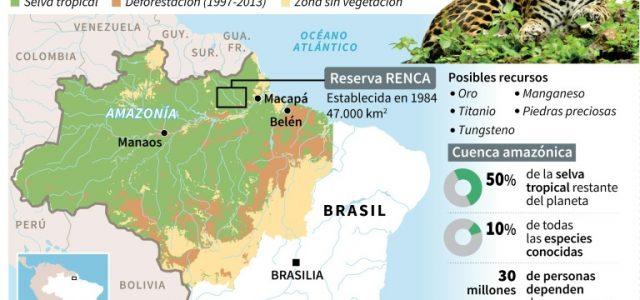 Brasil –La Amazonia a subasta