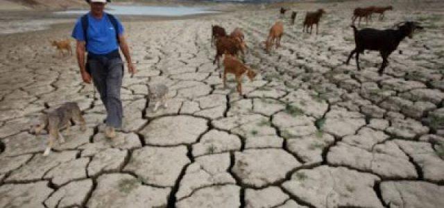 Nuevo lapidario informe sobre el estado del clima mundial