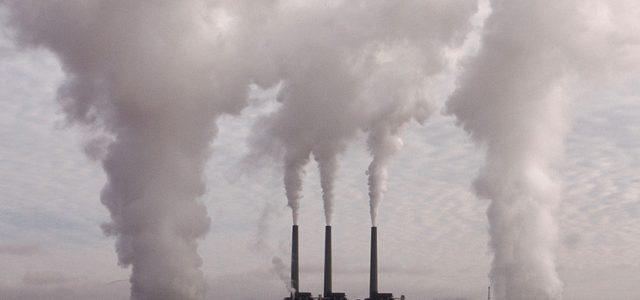 «Se nos acaba el tiempo»: 15.000 científicos alertan del terrible destino de la humanidad