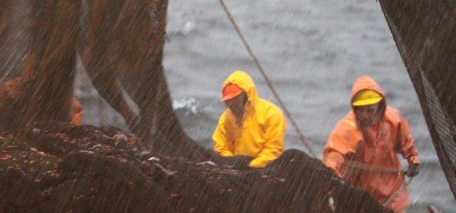 Chile – INDH alerta por sobreexplotación pesquera, disminución de la Biodiversidad Biológica e impactos de Cambio Climático