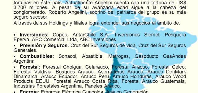 Chile – Fundación SOL: AFP, Grupo Angelini, Grupo Luksic