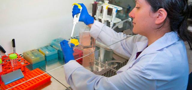 Bióloga chilena descubre vacuna contra el virus hanta y solo se encuentra con la indiferencia del gobierno