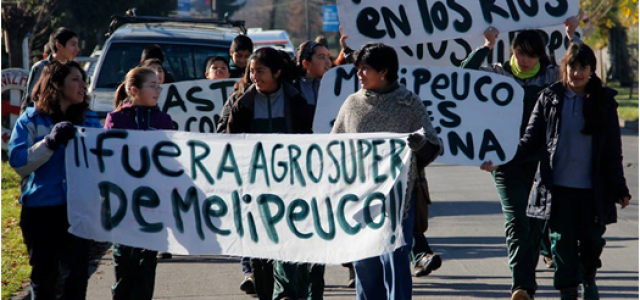 Chile / Wallmapu – Rechazan reapertura de piscicultura salmonera en territorio Mapuche de Melipeuco