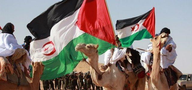 Organizaciones Latinoamericanas y Caribeñas de apoyo a la autodeterminación del pueblo Saharaui saludan el 45° Aniversario del Frente Polisario