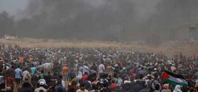 ¡Alto a la masacre del Ejército israelí en Gaza! ¡Alto a la ocupación!