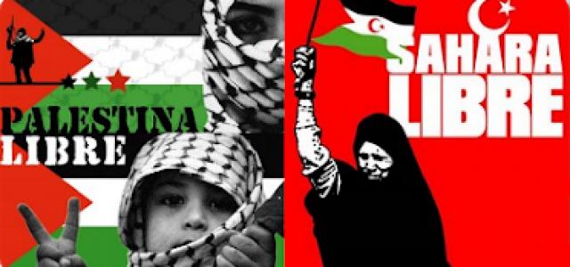 CEAS Sahara – Solidaridad con la lucha del pueblo palestino