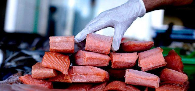 Morir trabajando en la industria exportadora de salmones en Chile
