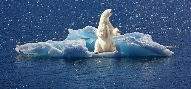 El cambio climático es ya muy palpable, pero la burbuja del carbono puede traer un shock financiero mundial