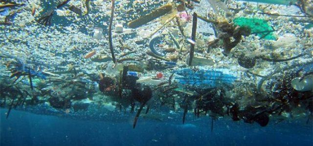 La muy grave contaminación por plásticos