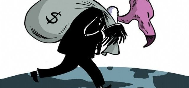 Bélgica dice no a los fondos buitres