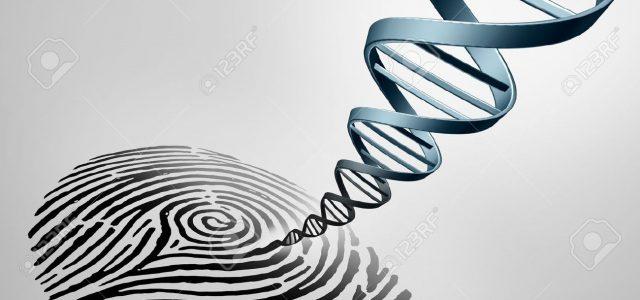 La no muy segura prueba criminalística de ADN