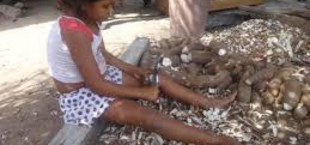 América Latina conduce en reversa en el objetivo de hambre cero
