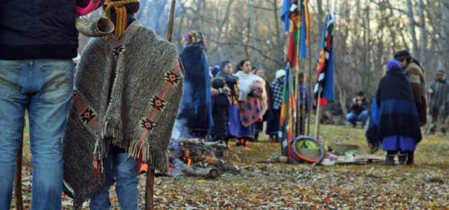 Chile / Wallmapu – Justicia ordena a Grupo Angelini a devolver tierras a comunidad indígena