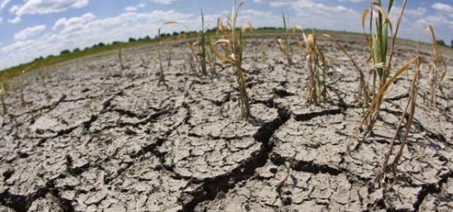 """Ni se arrugan: Gobierno pretende entregar """"perpetuidad"""" a los derechos de agua"""