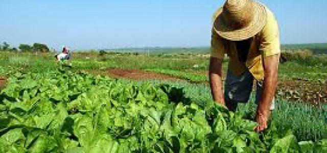 Brasil – «Perdido». Gobierno recula y cancela suspensión de la reforma agraria