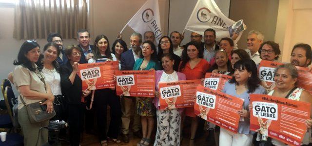 Chile: Gremios de Hacienda y del Servicio de Impuestos Internos se lanzan contra reforma de Piñera – Dejará de recaudar 833 millones de dólares