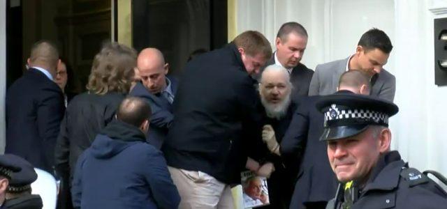 Assange, un hombre libre