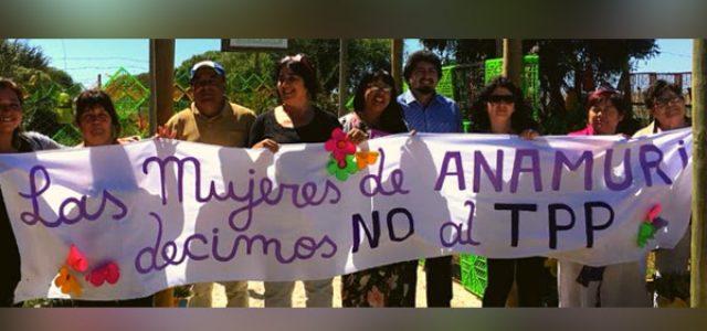 Declaración pública ANAMURI frente a la imposición del TPP-11