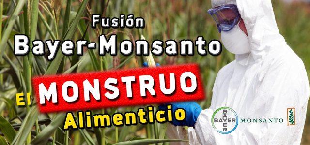 Un año de Monsanto & Bayer en Chile: Inversiones contaminantes