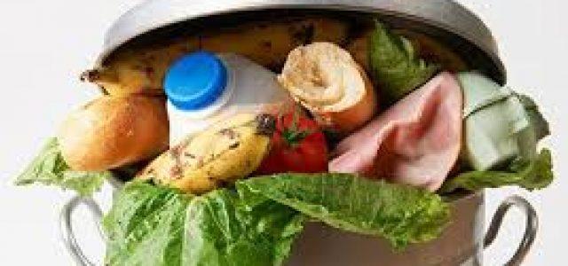 Despilfarro de Alimentos