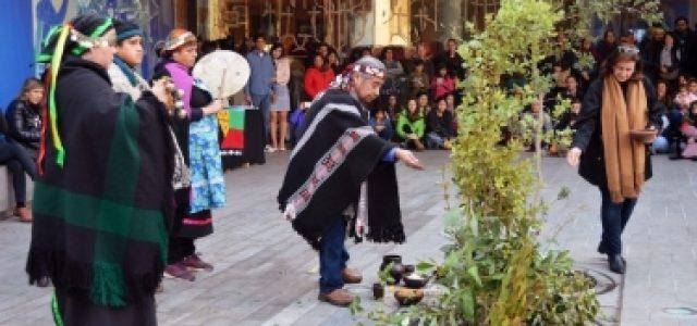 El año nuevo mapuche y la lucha contra el colonialismo cultural