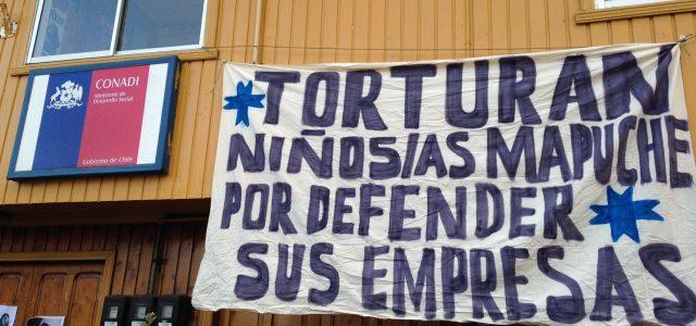 Invitan a Bachelet a reportar violación de Derechos Humanos mapuche
