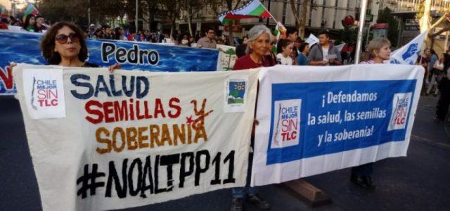 Plebiscito ciudadano sobre el TPP supera expectativas de participación: estará abierto hasta el 21 de julio