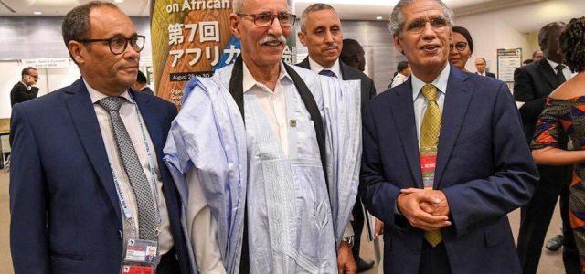 Cumbre Unión Africana-Japón en Yokohama: Una nueva victoria de la diplomacia saharaui y del derecho a la autodeterminación e independencia.