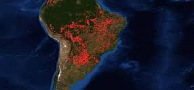 Deforestar para exportar: la política del gobierno brasileño que hizo arder el Amazonas