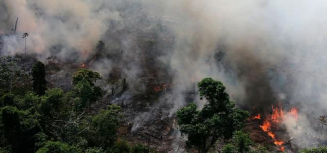 Las consecuencias que trae el incendio en el Amazonas