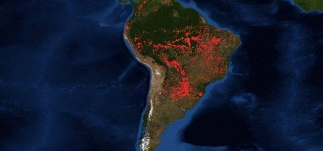 500 mil hectáreas en 16 días: la impresionante imagen satelital de los devastadores incendios forestales que consumen el Amazonas